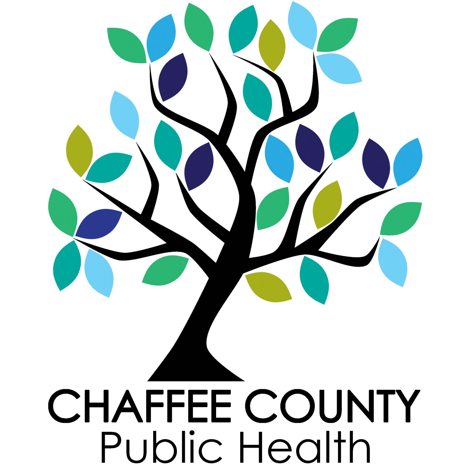 Chaffee County Oral Health Program